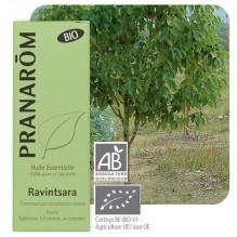 Huile essentielle de Ravintsara BIO - 10 ml