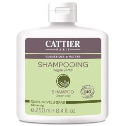 Shampooing cheveux gras BIO 250 ml