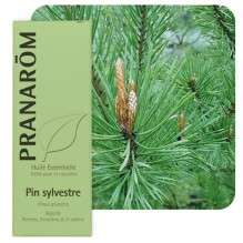 Huile essentielle de Pin sylvestre BIO - 10 ml