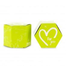 GREEN ZEST  boite verte de 10 infusettes Thé vert aromatisé Citron BIO