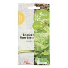 Batavia de Pierre-Benite 0,5g - Latuca sativa L.