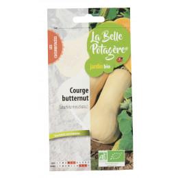 Courge Butternut - Cucurbita moschata L - 2,5g