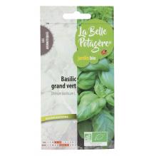 Basilic grand vert 0,5g