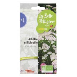 Achillée millefeuille - Achillea millefolium L. - 0,15g