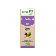 Complexe confort digestif Stomagem - SPRAY 10 ml