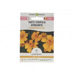 Tagète tenuifolia Sterafrikaantje Geel - 0,10 g