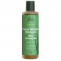 Shampooing  BIO - Blown away - Wild Lemongrass - 250 ml