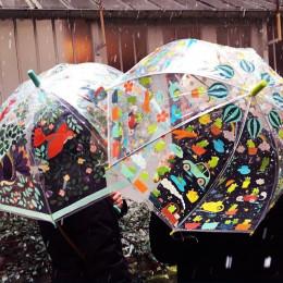Parapluie - Grenouillettes